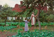 Picking Apples Posters - September Poster by Edmund Blair Leighton