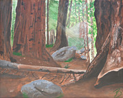 Sequoia Paintings - Sequoia by Travis Day