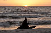 Judy Hall-Folde - Serendipity Sunset