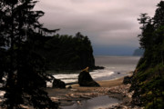 Moody Prints - Serene and pure - Ruby Beach - Olympic Peninsula WA Print by Christine Till