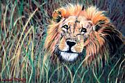 Lion Pastels Posters - Serengeti Ruler Poster by Carol McCarty