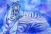 Tiger Paintings - Serenity by Amanda Klammer
