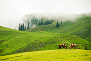 Pakistan Framed Prints - Serenity Framed Print by Syed Aqueel