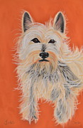 Christine Crosby - Serious Westie