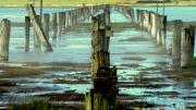 Fog Digital Art Prints - Sermon On The Marsh Print by Louie Rochon