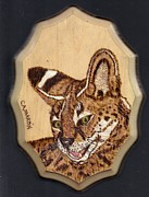 Pyrography Pyrography Framed Prints - Serval Framed Print by Clarence Butch Martin