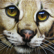 Eyes  Paintings - Serval by Jurek Zamoyski