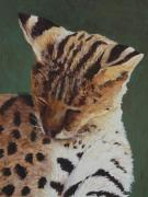 Wild Cats Paintings - Serval Nap by Margaret Saheed