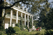 Oak Alley Plantation Photo Prints - Servant Brings Tea To Women Seated Print by Justin Locke