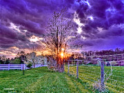 Picket Fence Prints - Setting Sun Print by Stephen Younts