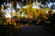 Lake Buena Vista Prints - Settlement Trading Post Print by David Lee Thompson