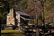 Settlers Posters - Settlers Cabin Cades Cove Poster by Douglas Barnett