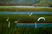 Pawleys Island Prints - Seven Egrets - Pawleys Island Marsh Print by Keith Wilkie