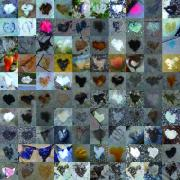 Grid Of Heart Photos Digital Art - Seven Hundred Series by Boy Sees Hearts