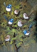 Wrens Prints - Seven Superb Fairy Wrens Print by Audrey Russill