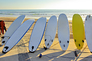 Surf Board Prints - Seven Surfboards Print by Carlos Caetano