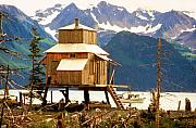 Alaska Prints Prints - Seward Alaska House of Stilts Print by James Bo Insogna