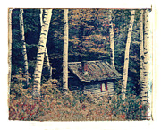 Polaroid Transfer Prints - Shack and Birch Trees Print by Joe  Palermo