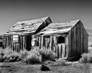 Old Shack Photos - Shack and Wash Pan by Joe  Palermo