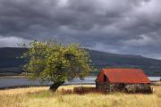Featured Metal Prints - Shack In A Field Strontian, Highland Metal Print by John Short
