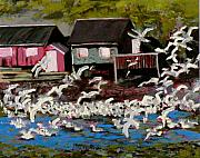 Old Cabins Framed Prints - Shack Island Seagulls Framed Print by Carla Stein