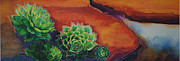 Hens And Chicks Paintings - Shades of Desert by Tracy L Teeter