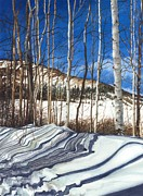 Mountains Painting Metal Prints - Shadow Dance 1 Metal Print by Barbara Jewell