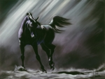 Horse Pastels Posters - Shadow Dancer Poster by Kim McElroy