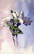 Lillies Painting Prints - Shadow Lilies Print by Arline Wagner