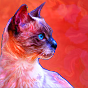 Cat Portraits Mixed Media Prints - Shadow Print by Tammy Berk
