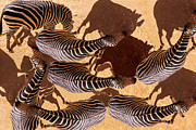 Zebra Pyrography - Shadows by E  Kraizberg