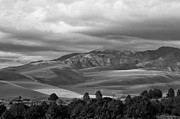 Great Sand Dunes Prints - Shadows Sand Mountians Print by Wilma  Birdwell