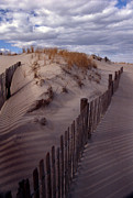 Beach Fence Metal Prints - Shadows Metal Print by Skip Willits