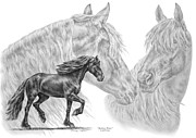 Mane Drawings - Shadowy Waves - Friesian Horses Art Print by Kelli Swan
