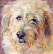 Pastel Dog Paintings - Shaggy Schatzi by Kimberly Santini