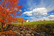 Fall Grass Posters - Shaker Village Poster by Robert Clifford