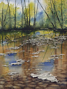 Creek Paintings - Shallow Water by Sam Sidders