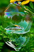 Soap Bubble Prints - Shambhala Print by Marilynne Bull