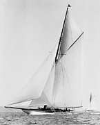 New York Harbor Art - Shamrock III 1903 BW by Padre Art