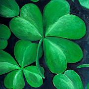Plants Paintings - Shamrocks by Nancy Mueller