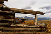 Cabin Window Framed Prints - Shane Cabin View Framed Print by Clare VanderVeen