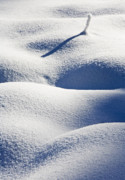 Winter Photo Originals - Shapes of Winter by Mike  Dawson
