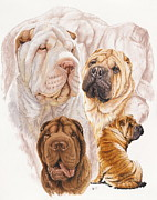 Shar Pei Print by Barbara Keith