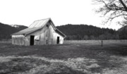 Landscape Greeting Cards Metal Prints - Shasta Barn Metal Print by Kathy Yates