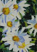 Flowers Pastels - Shastas by Mary McInnis
