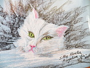 Pet Pastels - She by Judy Via-Wolff