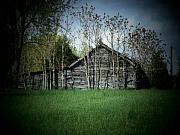 Shed And Trees Print by Michael L Kimble