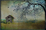 Country Scenes Metal Prints - Shed In The Hills Metal Print by Jan Amiss Photography