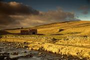 Farm Structure Prints - Shed In The Yorkshire Dales, England Print by John Short