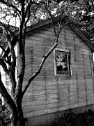 Rural Indiana Prints - Shed Print by Mary Rath